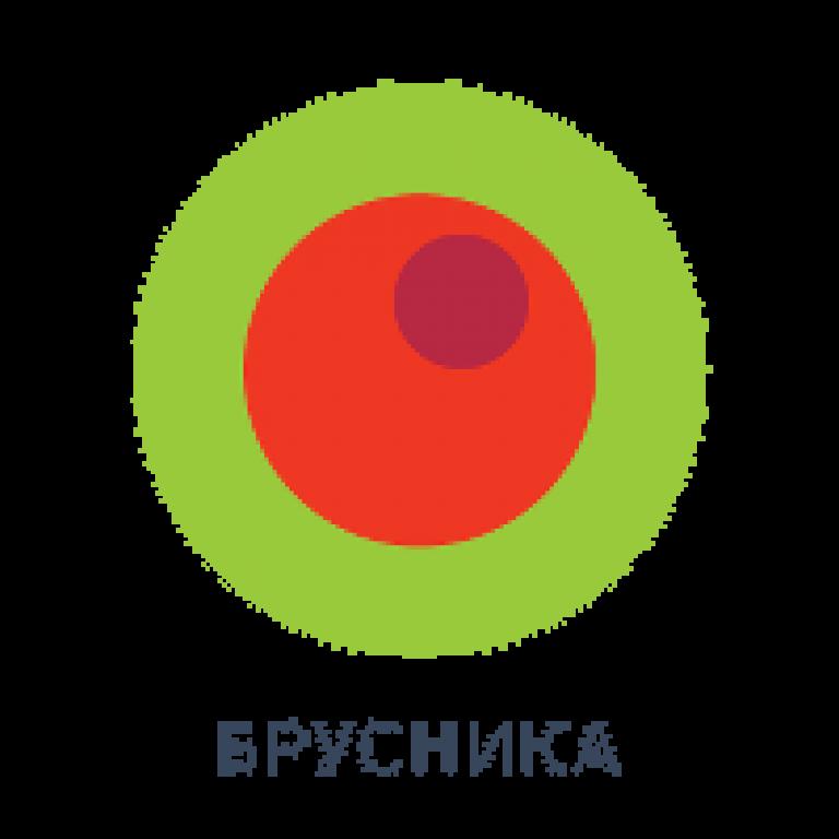 Brusnika_logo